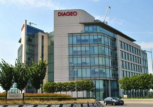 diageo plc case study Essay on diageo capital structure case diageo case study the conglomeration known as diageo plc became the world's largest spirits and wine holding company.