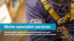 niche-specialist-services